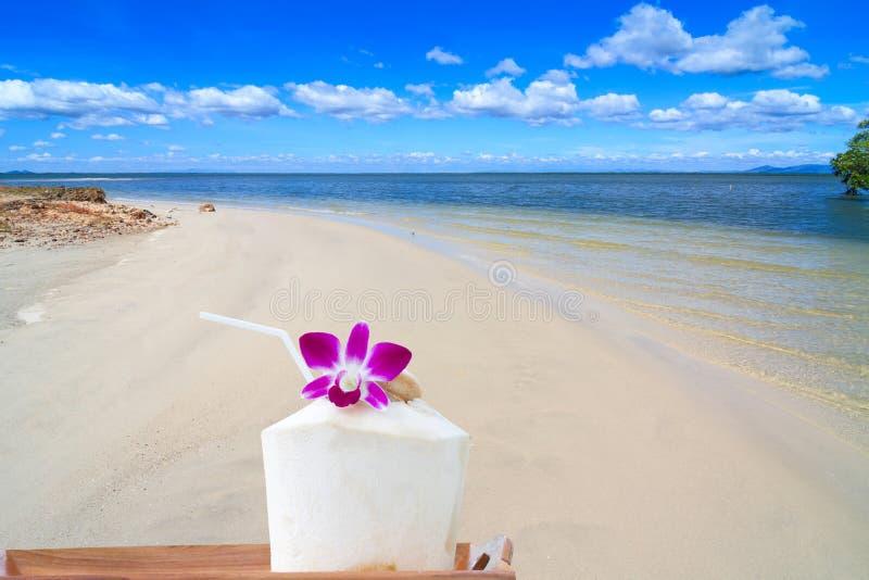 Cóctel del coco para servir en la playa fotografía de archivo