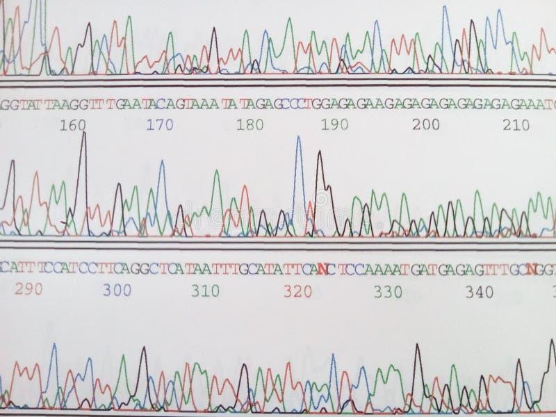 Código genético imágenes de archivo libres de regalías