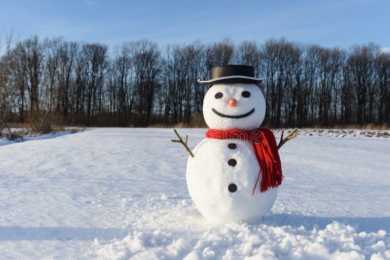 Cómico muñeco de nieve con sombrero negro foto de archivo libre de regalías
