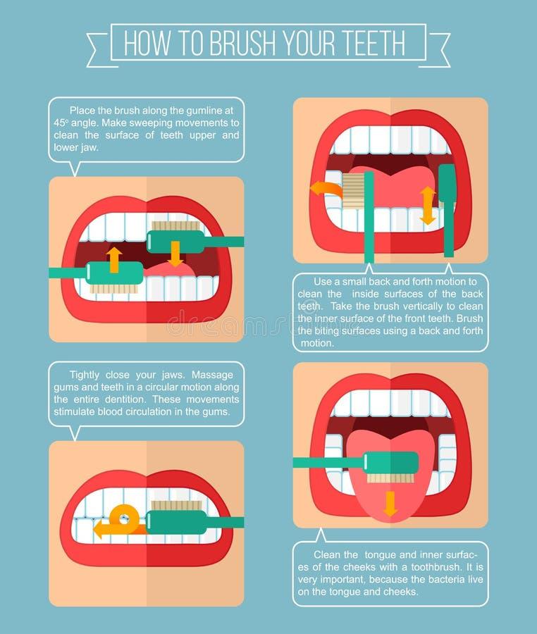 Cómo aplicar sus dientes con brocha ilustración del vector