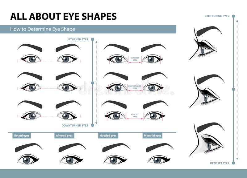 Cómo determinar forma del ojo Diversos tipos de ojos femeninos Sistema de ejemplos del vector con los subtítulos Plantilla para e ilustración del vector