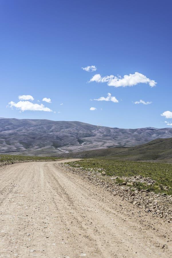 Cóndor, Quebrada de Humahuaca, Jujuy, la Argentina foto de archivo