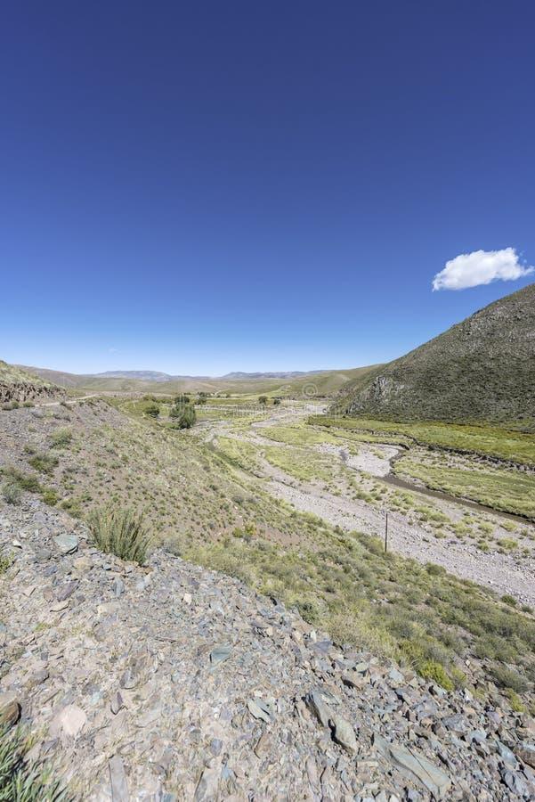 Cóndor, Quebrada de Humahuaca, Jujuy, la Argentina fotografía de archivo libre de regalías