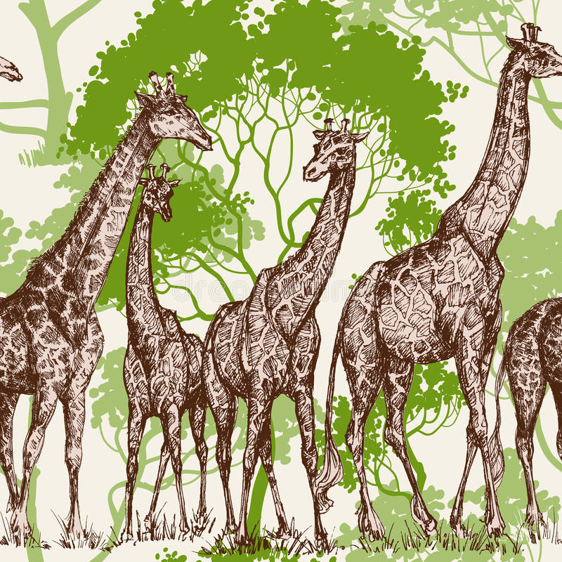 Cópia animal ilustração stock