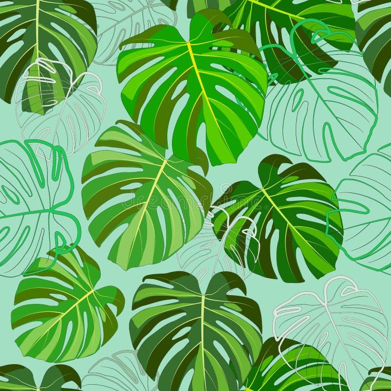 Cópia das folhas verdes tropicais, Monstera, em um fundo claro da hortelã ilustração royalty free
