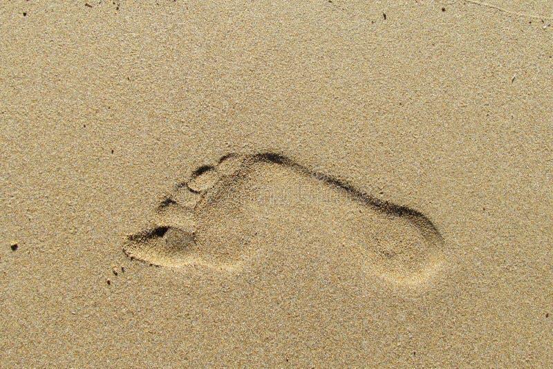 Cópia do pé na areia foto de stock royalty free