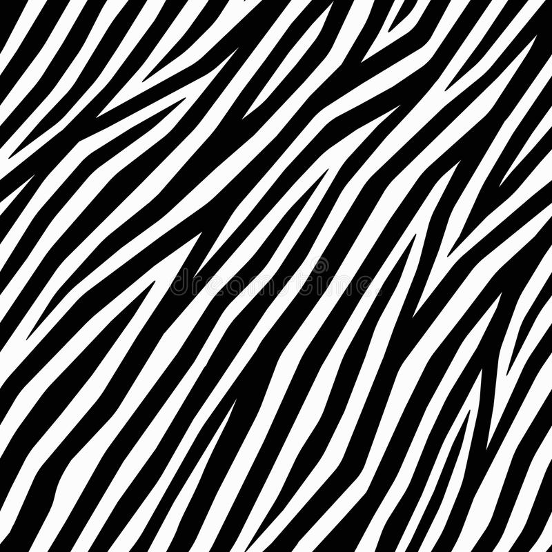 Cópia lisa da zebra ilustração do vetor
