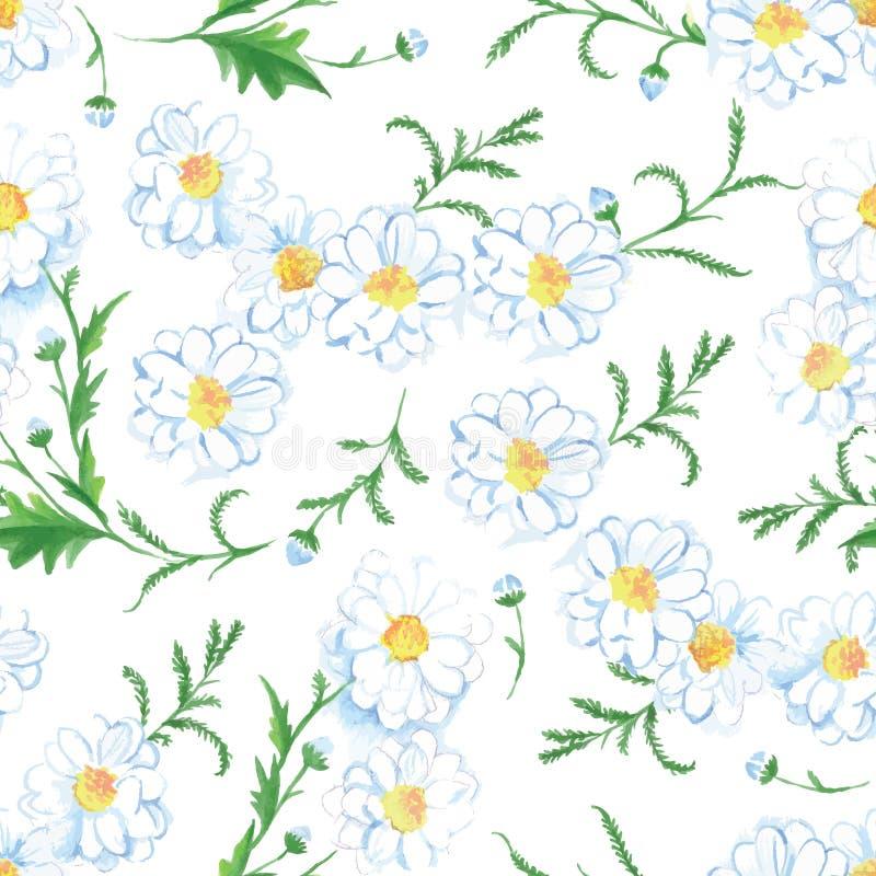 Cópia sem emenda do vetor das flores da camomila ilustração royalty free