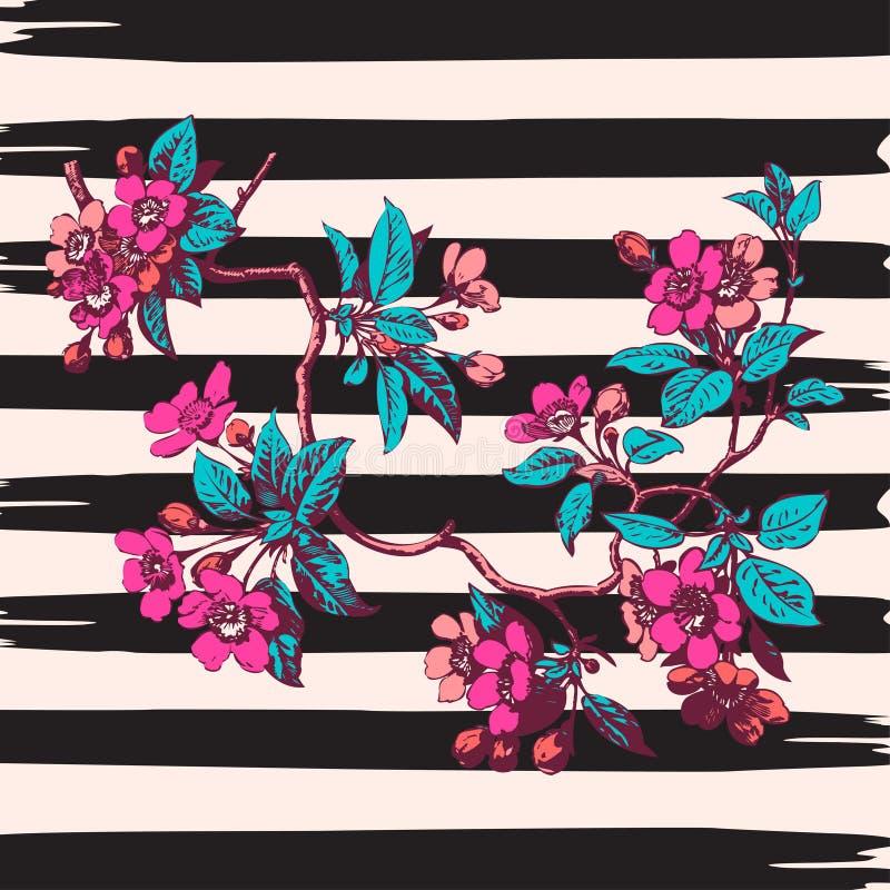 Cópia tirada mão do vintage de sakura das rosas da flor do ramo nas listras w ilustração do vetor