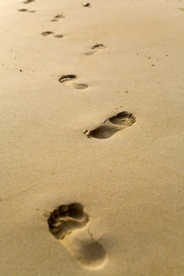 Cópias Do Pé Da Areia Foto De Stock Grátis