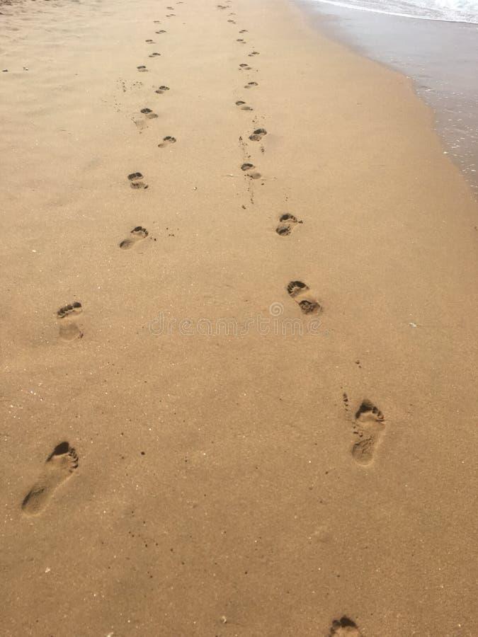 Cópias do pé na areia fotos de stock