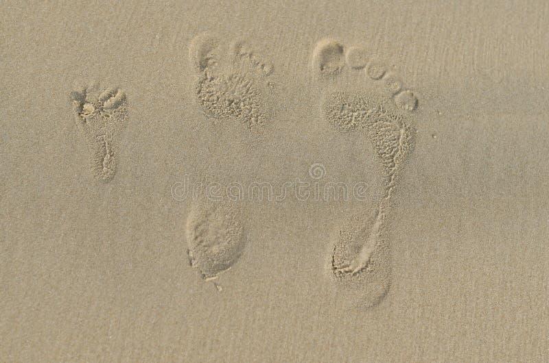 Cópias dos pés do homem, da mulher e da criança fotografia de stock royalty free