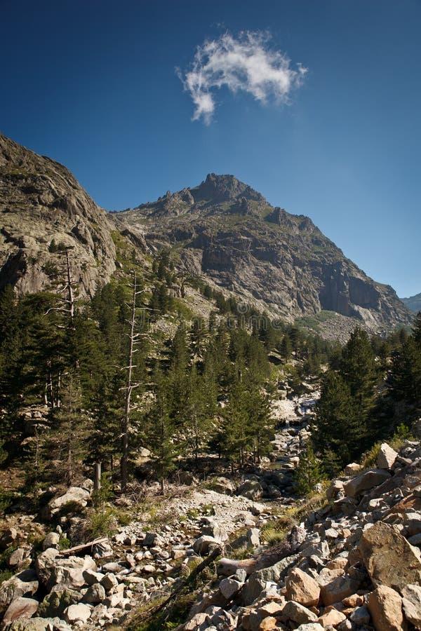 Córcega interior, valle espléndido de Restonica foto de archivo libre de regalías