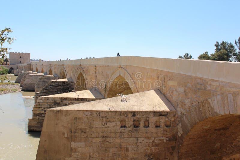 Córdova, ponte romana O grande interior famoso da mesquita ou do Mezquita em Córdova, Espanha foto de stock