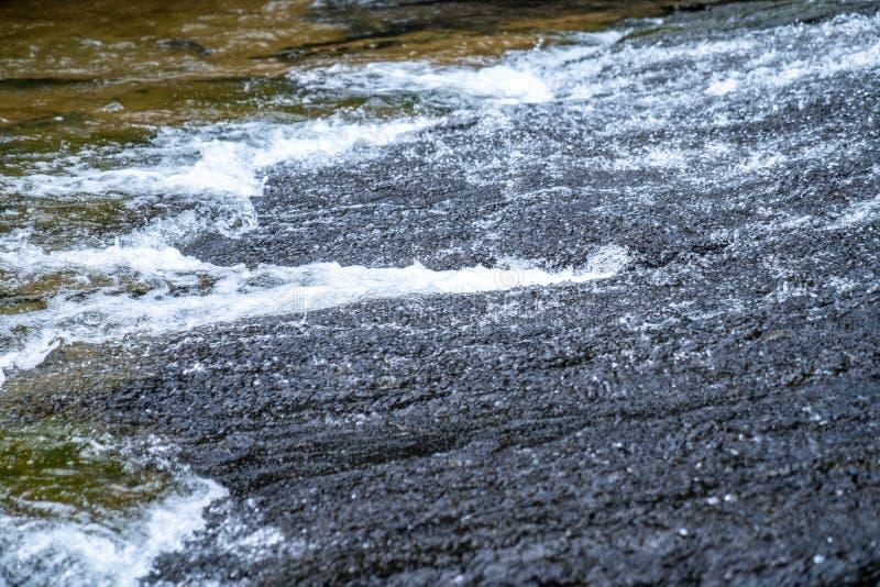Córrego ascendente próximo da água da queda da água na selva imagem de stock royalty free