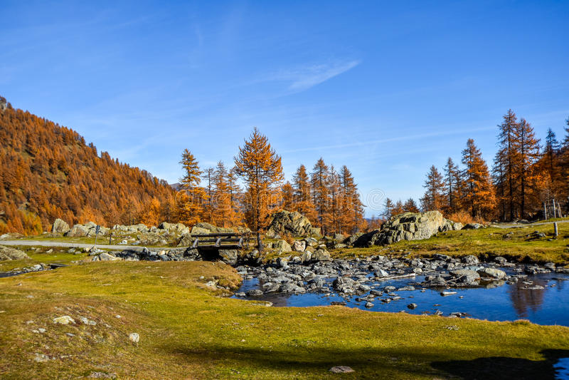 Córrego bonito na montanha com céu azul, árvores vermelhas no outono e ponte velha foto de stock
