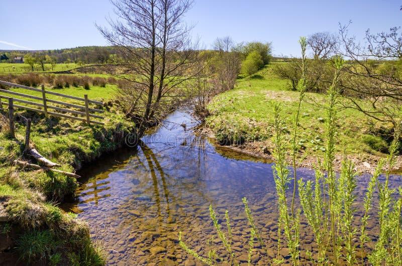 Córrego cênico com árvore desencapada e a cerca de madeira fotos de stock royalty free