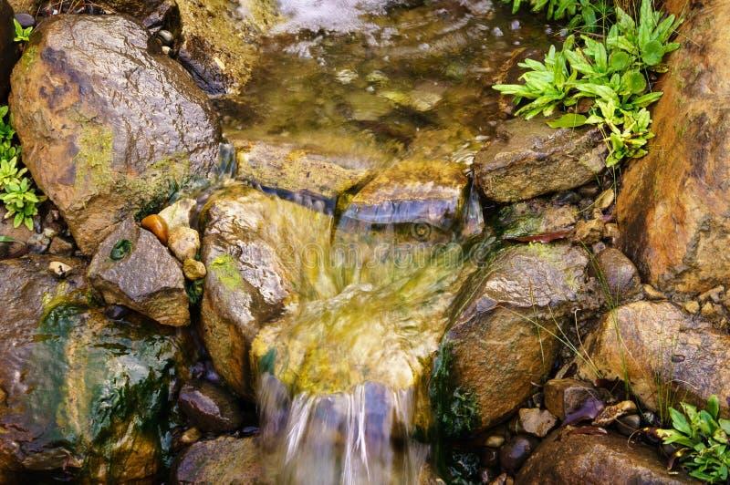 Córrego calmo fotos de stock