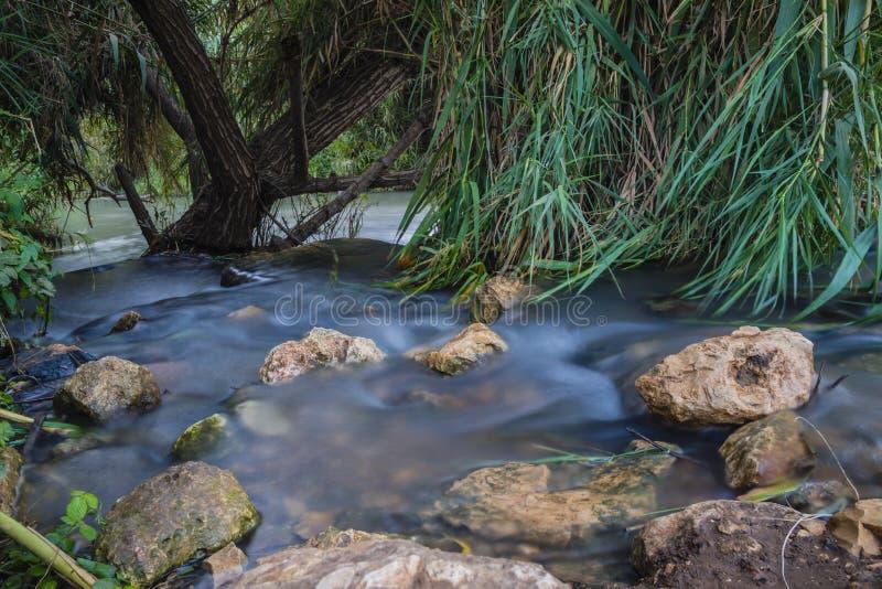 Córrego calmo fotos de stock royalty free