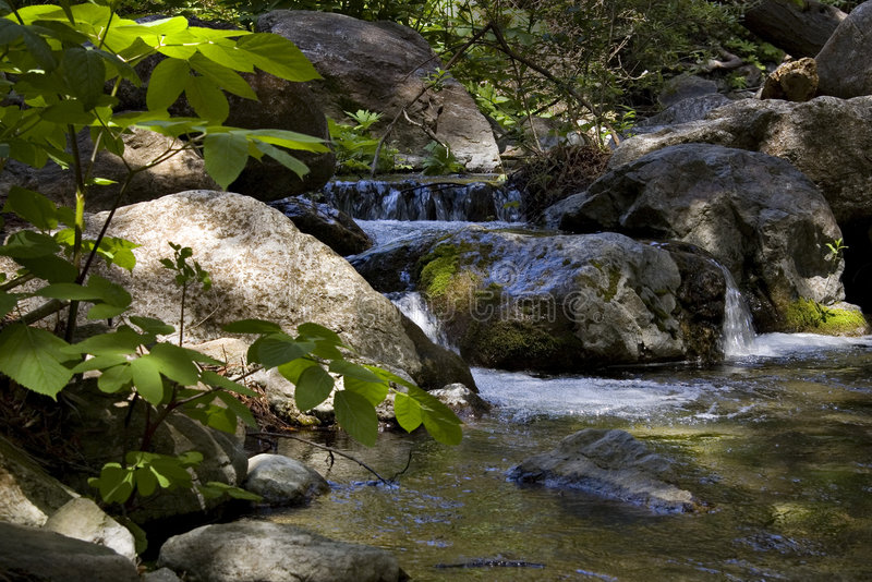 Córrego calmo da montanha fotos de stock royalty free