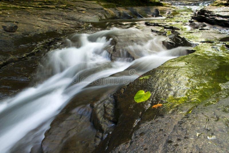 Córrego calmo em Pensilvânia imagem de stock royalty free