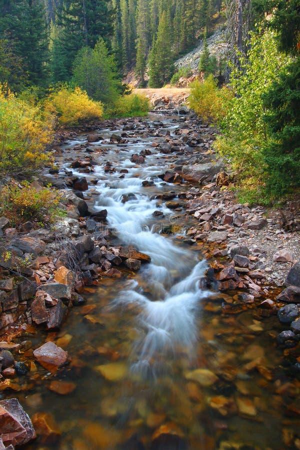 Córrego como novo de Montana imagem de stock