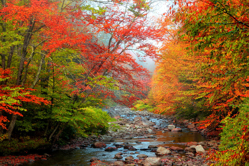 Córrego da água em Vermont imagens de stock royalty free
