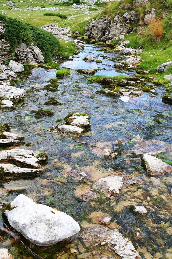 Córrego da água na natureza imagens de stock