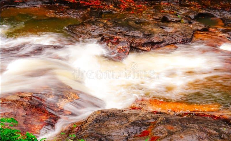 Córrego da cachoeira e do córrego e bonito de fluxo imagens de stock royalty free
