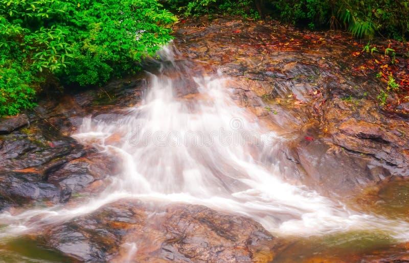 Córrego da cachoeira e do córrego e bonito de fluxo fotografia de stock
