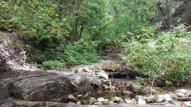 Córrego da garganta da rocha no fim do verão foto de stock