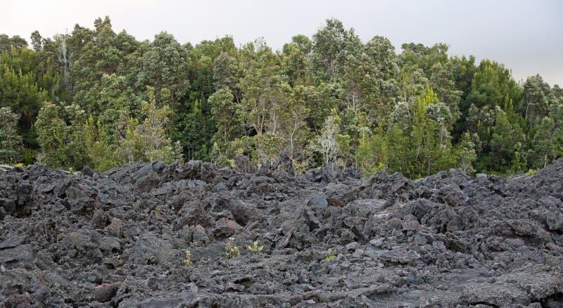 Córrego da lava imagens de stock
