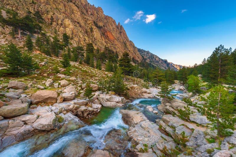 Córrego da montanha em Córsega França no por do sol imagem de stock royalty free
