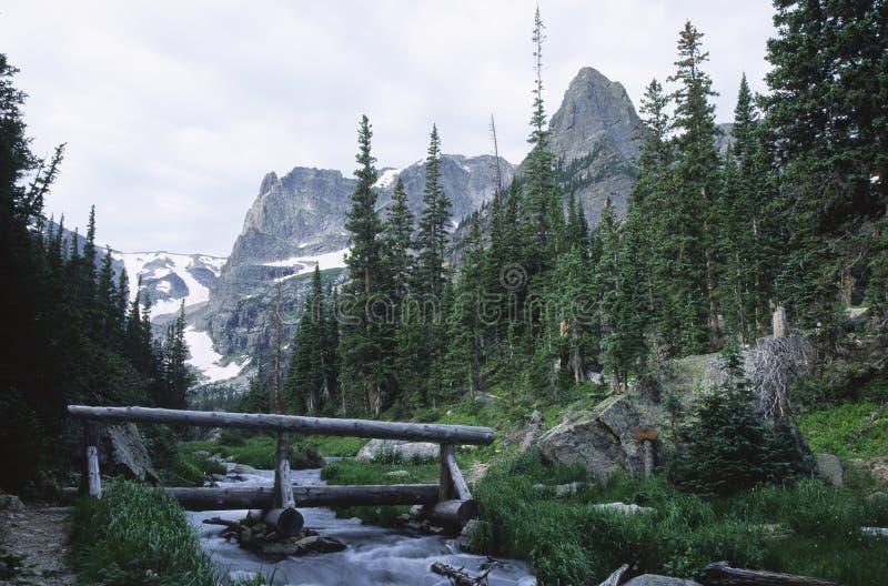 Córrego da montanha em montanhas rochosas de Colorado imagens de stock royalty free