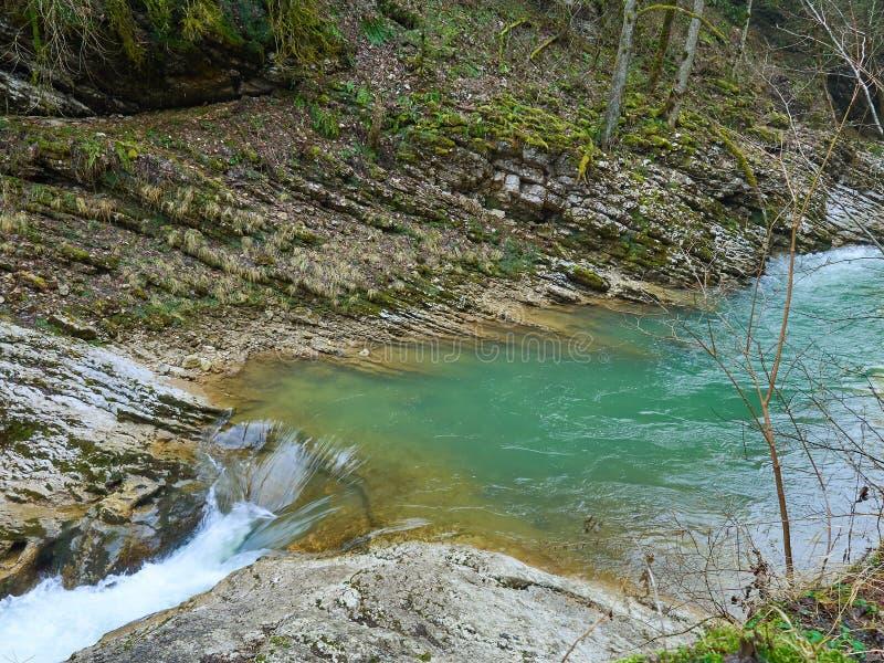 Córrego da montanha na primavera fotos de stock
