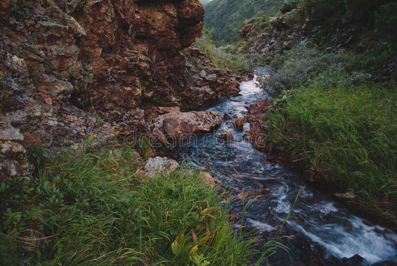 Córrego da montanha no por do sol imagem de stock royalty free
