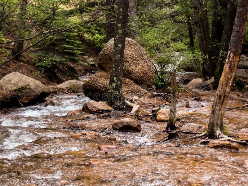 Córrego de borbulhagem claro da montanha fotografia de stock