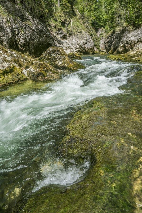 Córrego de conexão em cascata da montanha fotografia de stock royalty free