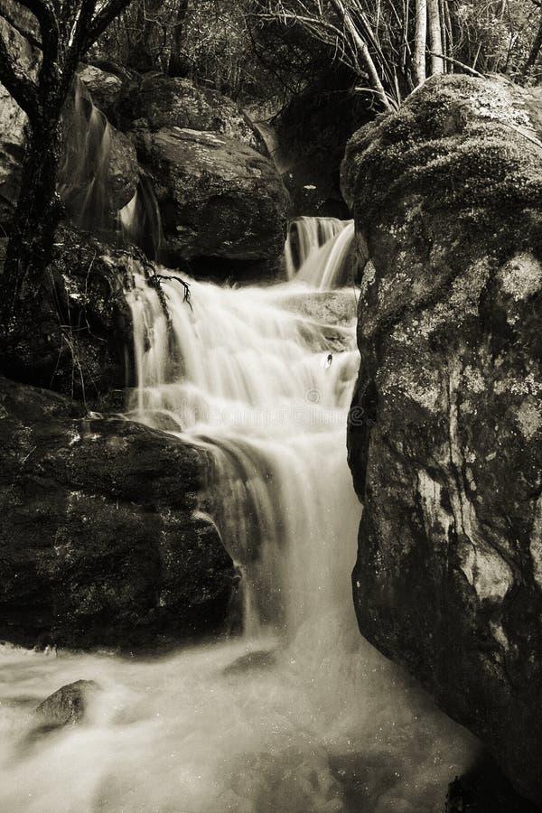 Córrego De Conexão Em Cascata No Sepia Imagens de Stock Royalty Free