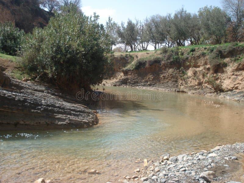 Córrego de refrescamento com as oliveiras em Aderj, Sefrou, Marrocos foto de stock