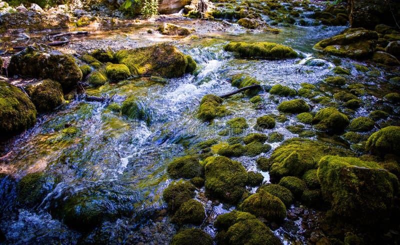 Córrego de um rio da montanha foto de stock royalty free