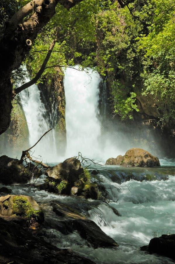 Córrego e cachoeira imagens de stock