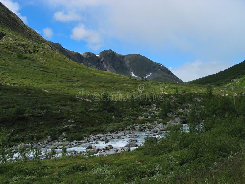 Córrego em um vale verde fotos de stock