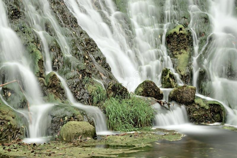 Córrego enevoado fotografia de stock royalty free
