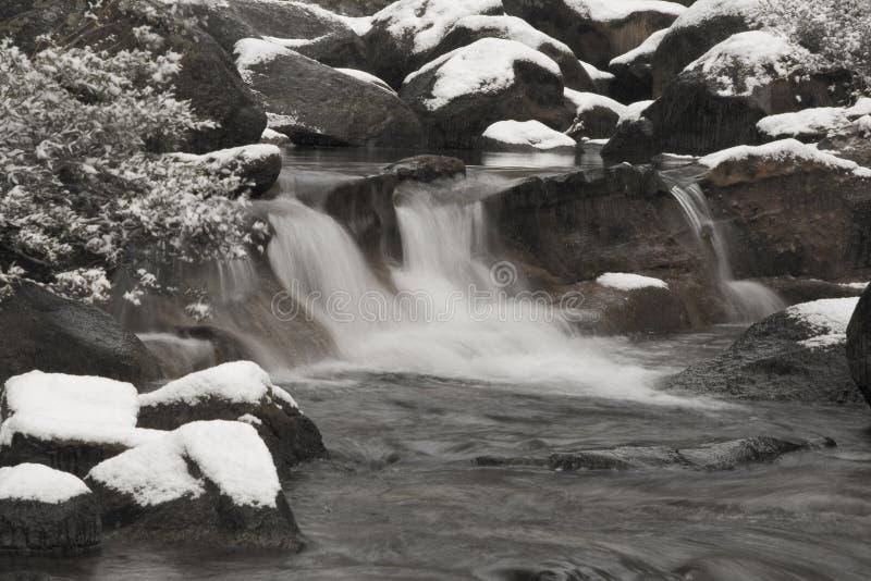 Córrego fresco imagens de stock royalty free