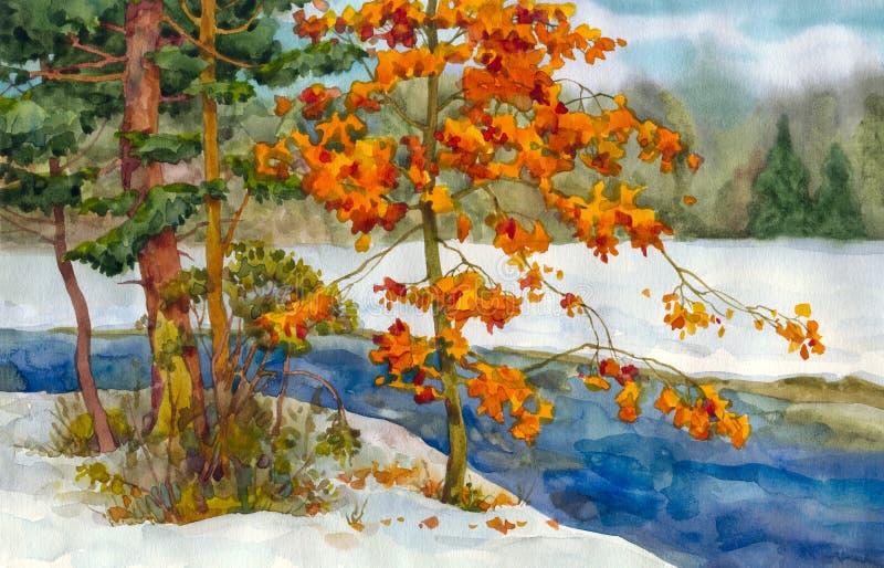 Córrego na floresta do inverno ilustração stock