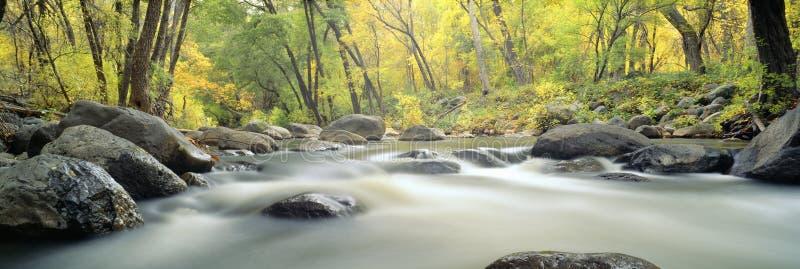 Córrego na garganta do Cottonwood fotos de stock
