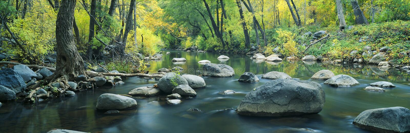 Córrego na garganta do Cottonwood imagens de stock