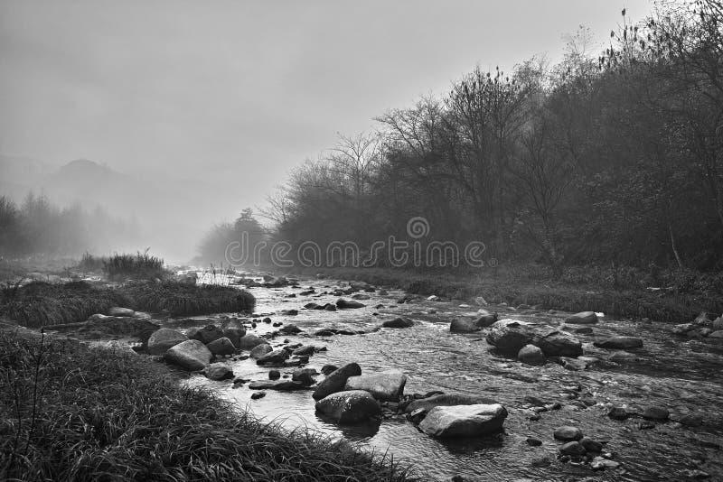Córrego na manhã, preto e branco. imagens de stock royalty free