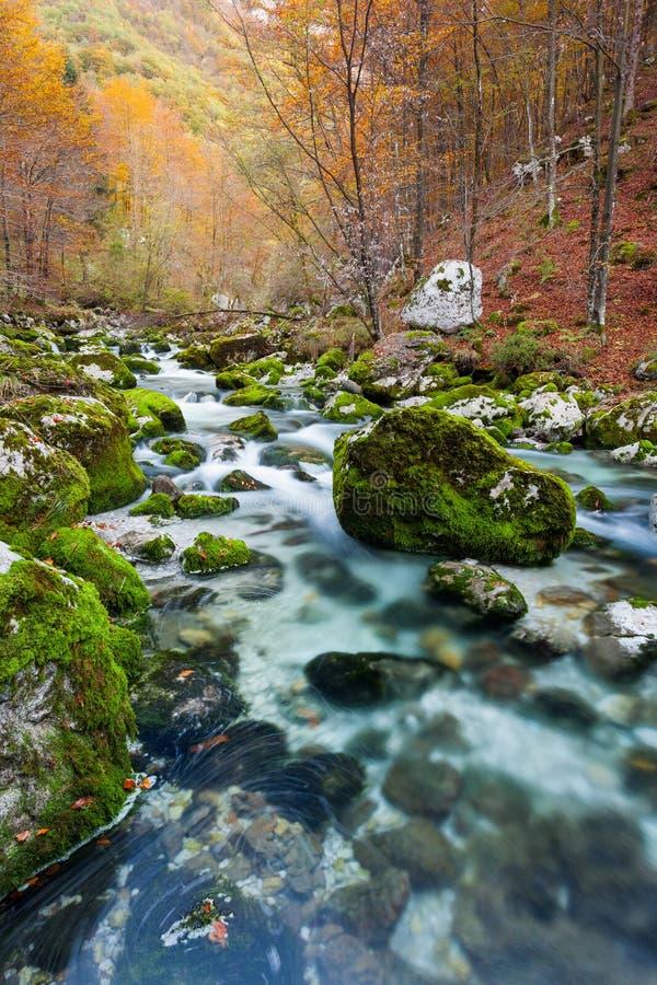 Córrego no outono, Julian Alps da montanha, Itália fotografia de stock